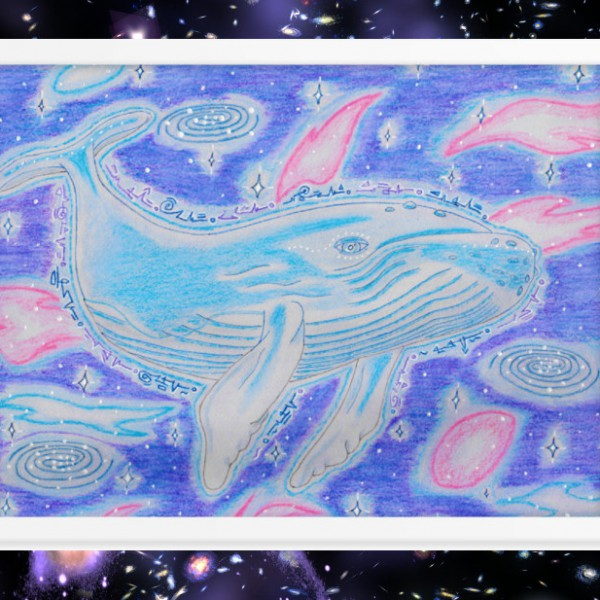 spacewhalestaged